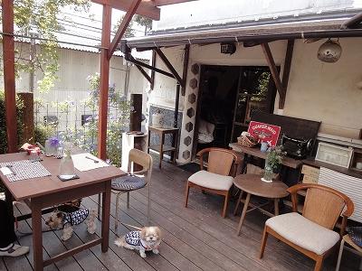 蔵カフェ&ぎゃらりぃ野いばらの実